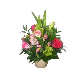 St. Lucia flowers  -  Pink Delight Flower Bouquet/Arrangement