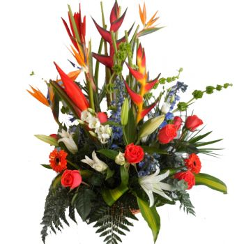 St. Lucia flowers  -  Tropical Burst Flower Bouquet/Arrangement