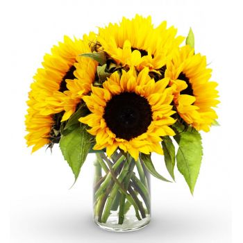 Santo Domingo flowers  -  Sunny Delight Flower Bouquet/Arrangement