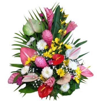 Saint Martin flowers  -  Exotic Flower Delivery