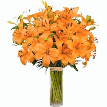 Spain flowers  -  Pretty Flower Delivery