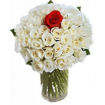 Bijela flowers  -  Thinking of You Flower Delivery