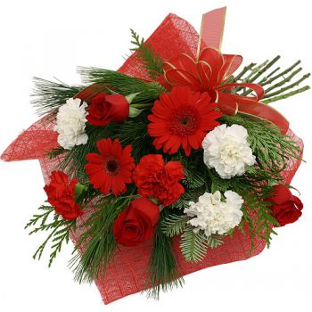 Cala Tarida flowers  -  Red Beauty Flower Delivery
