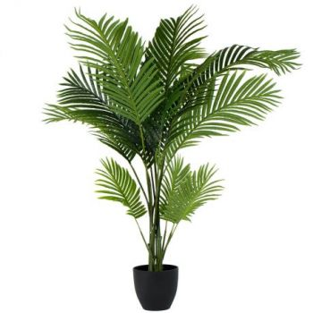 Oman online Florist - Palm Tree Bouquet