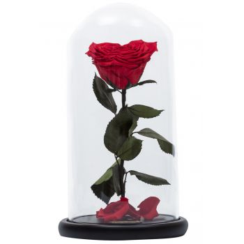 Laqlouq flowers  -  Enchanted Rose Flower Delivery