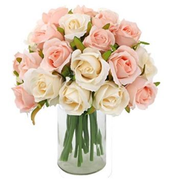 Cuba flowers  -  Roses-salmon-colour Flower Delivery