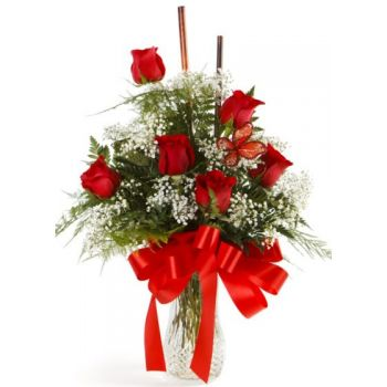 Gerona flowers  -  Essential Flower Delivery