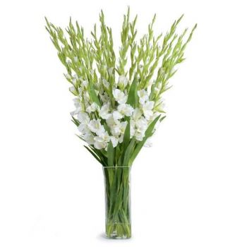 Paradero - Santa Fe flowers  -  Fresh Summer Love Flower Delivery