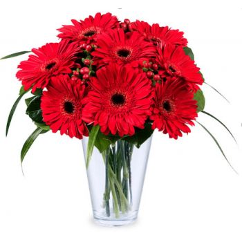 Tlalnepantla de baz  flowers  -  Fiery Greetings from Mexico Flower Delivery