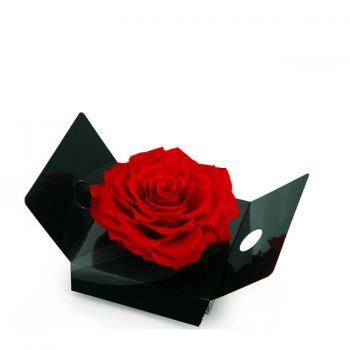 Santander flowers  -  An eternal rosebud   Flower Delivery