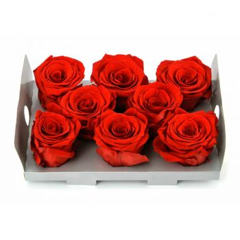 Las Gabias flowers  -  6 Eternal Rosebuds Flower Delivery