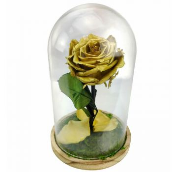 Faro bloemen bloemist- Eternal Rose Dome Bloem Levering