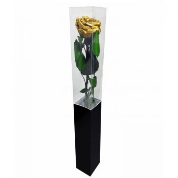 Povoação flowers  -  Eternal Rose 55 cm Flower Delivery
