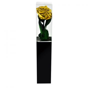 Zaragoza flowers  -  Eternal Rose 35 cm Flower Delivery