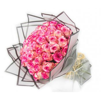 Qatar flowers  -  Pink bombshell Flower Delivery