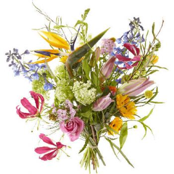Aalsmeer flowers  -  Bouquet Seize the Day Flower Delivery