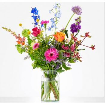 Holland flowers  -  For the Sweetest Flower Delivery