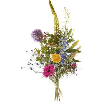 Halsteren flowers  -  Congratulation Flower Delivery