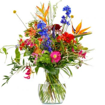 Abbega flowers  -  Color Explosion Flower Delivery
