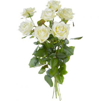 Aalsmeer flowers  -  Single White Roses Flower Delivery