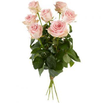 The Hague online Florist - Single Pink Roses Bouquet