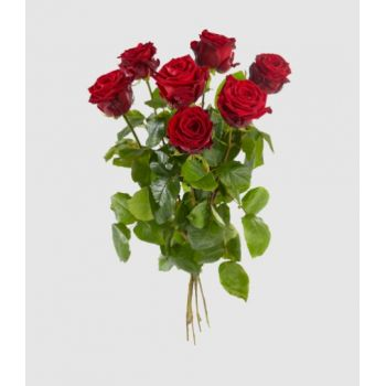 Amsterdam flowers  -  Large-flowered red roses Delivery