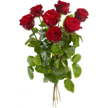 The Hague flowers  -  Large-flowered red roses Delivery