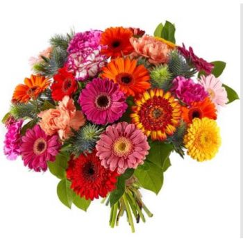 Hillegom flowers  -  Happy Flower Delivery