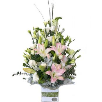 Gold Coast flowers  -  Designer's Choice- Pastel Arrangement Flower Delivery