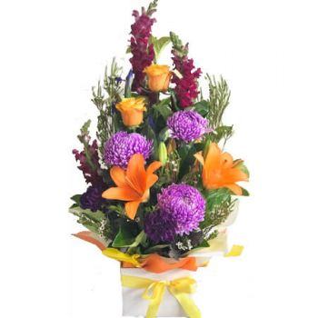 Gold Coast flowers  -  Designer's Choice- Bright Arrangement Flower Delivery
