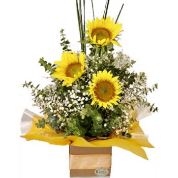 Gold Coast flowers  -  Karilyn Flower Delivery