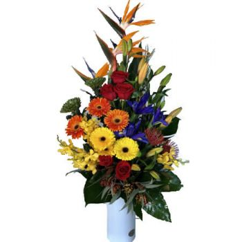 Gold Coast flowers  -  Dazzle Flower Delivery