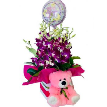 Gold Coast flowers  -  Baby Basket 1 Flower Delivery