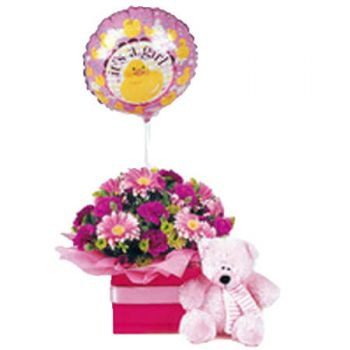 Gold Coast flowers  -  Baby Basket 2 Flower Delivery