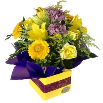 Gold Coast flowers  -  Bold n' Bonny Flower Delivery