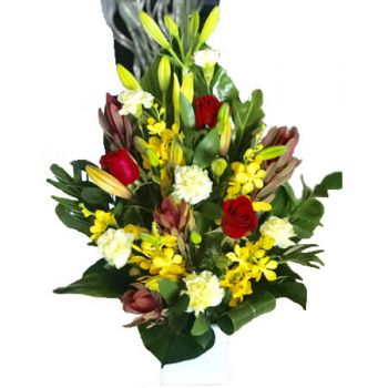 Gold Coast flowers  -  Diano Flowers Delivery