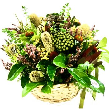 Gold Coast flowers  -  Ekon – Natives Flower Delivery